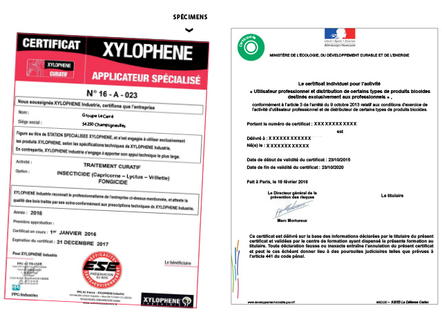 certificats-xylophene-groupe-le-carre