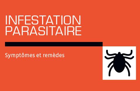 Infestation parasitaire